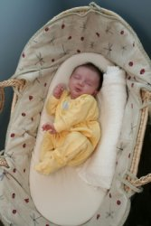 photo of sleeping baby in moses basket